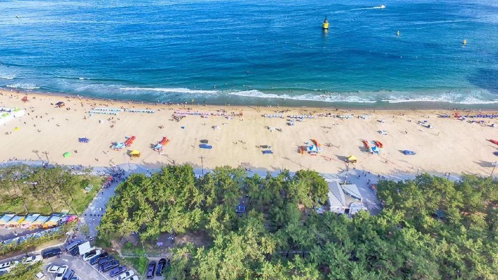 Menikmati Pantai di Korea Selatan Kini Harus Reservasi Dulu