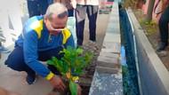 Biar Makin Adem, Pemkot Semarang Akan Tanam Pohon Serentak