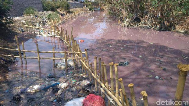 Tercemar Limbah, Warna Air Sungai Ciberes Cirebon Berubah Jadi Pink
