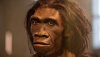 Fosil Tertua Nenek Moyang Manusia Ditemukan!