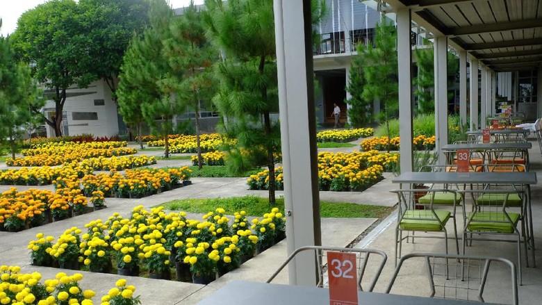 Wisata Relaksasi di Rumah Atsiri Tawangmangu