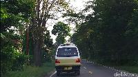 Angkutan kota di Balikpapan dipanggil dengan sebutan taksi. Padahal seperti diketahui, istilah taksi di Pulau Jawa merujuk pada jenis transportasi yang lebih personal dan biasanya menggunakan mobil jenis sedan. Lalu mengapa angkot di Balikpapan disebut taksi? Foto: Luthfi Anshori/detikOto
