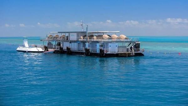 Untuk bisa menginap di penginapan ini, traveler harus mengeluarkan uang sekitar Rp 7.600.000/orang. Harga ini sudah termasuk makan pagi, makan siang, makan malam, akomodasi kegiatan bawah laut dan beberapa fasilitas lainnya. (Reefsuites/handout)