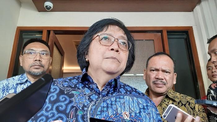 Menteri LHK Siti Nurbaya (Lisye Sri Rahayu-detikcom)