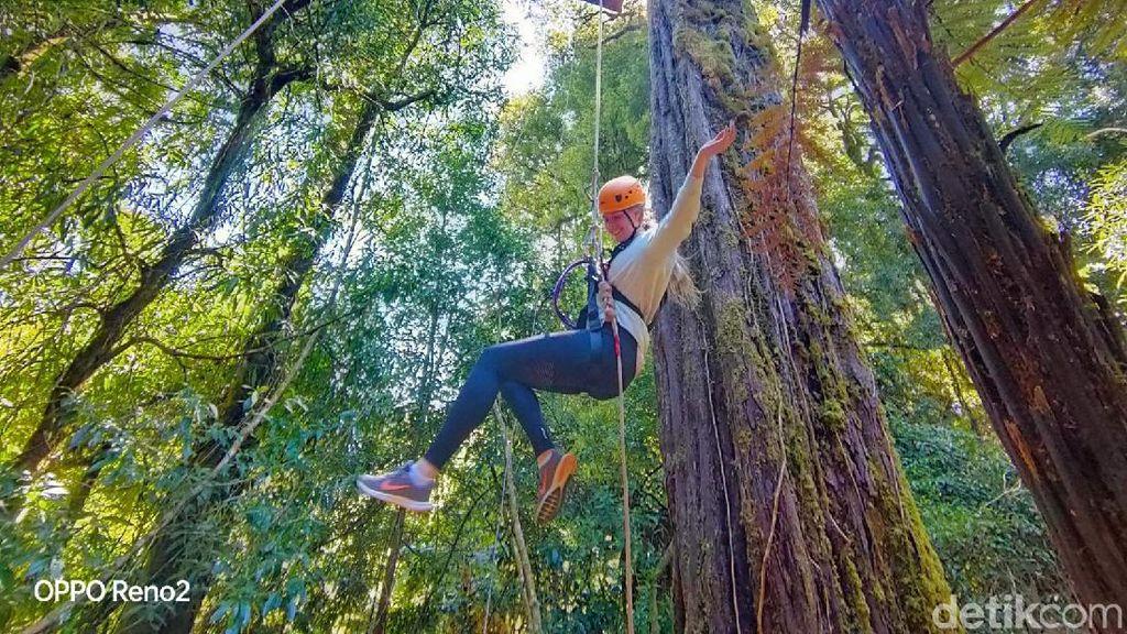 Menguji Nyali di Balik Hijaunya Negeri Kiwi