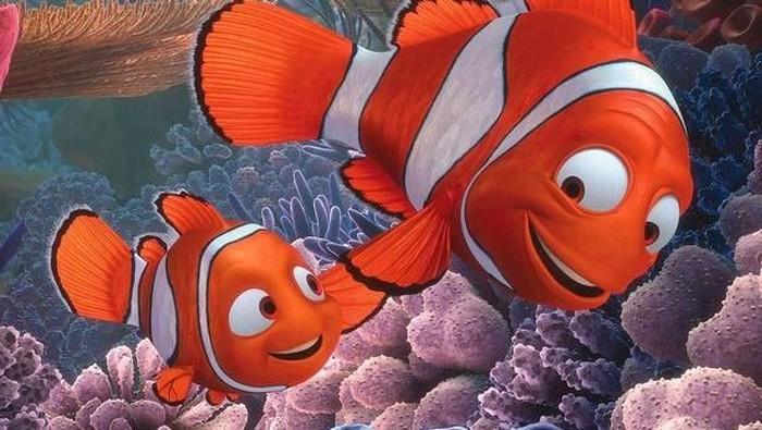 Ikan badut terancam punah. Foto: Disney