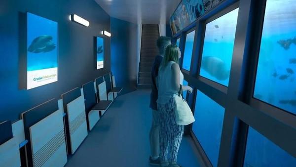 Ada ruangan observatory, di mana pengunjung bisa menjelajahi kehidupan hewan di bawah laut. (Reefsuites/handout)