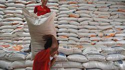 Bulog Mau Serap 950.000 Ton Beras Petani Tahun Ini