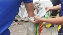 5 Kobra Peneror Warga Jember Ditangkap