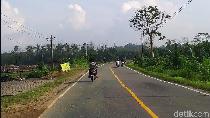 Intip Kondisi Jalan dan Lalu Lintas di Calon Ibu Kota Indonesia