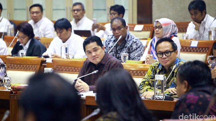 Rapat Erick Thohir di Komisi VI DPR RI/Foto: Lamhot Aritonang/detikcom