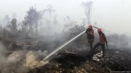 CIFOR: 1,6 Juta Hektare Lahan dan Hutan Indonesia Terbakar di Tahun 2019