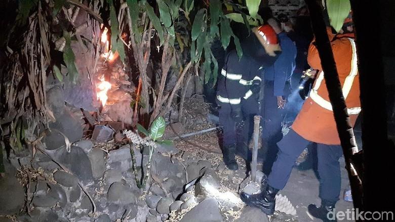 Tim Damkar Makassar Evakuasi 2 Sarang Tawon Vespa