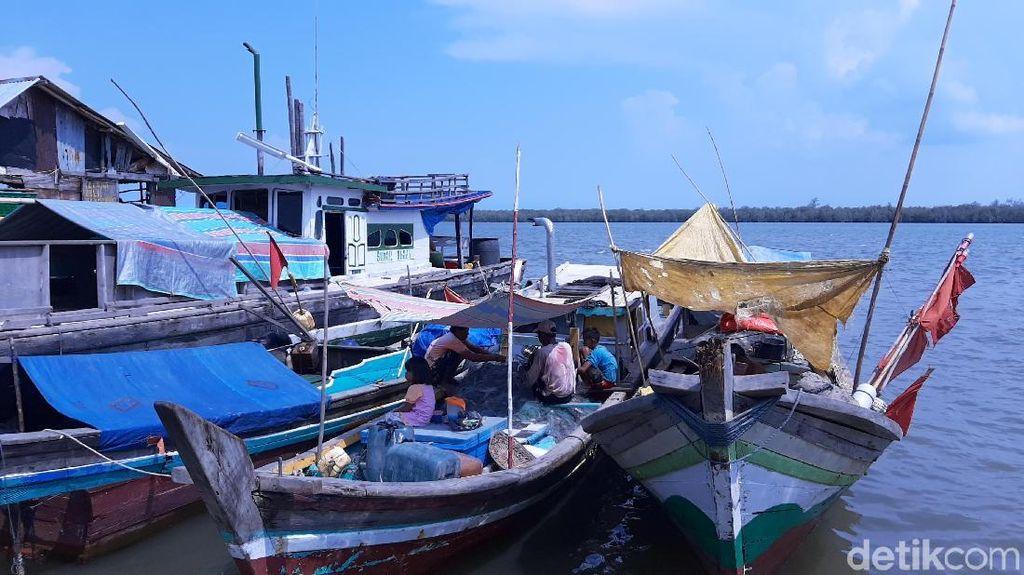Foto: Tempat Melihat Lumba-lumba di Palembang