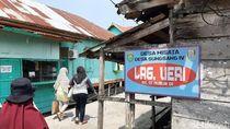 Pesona Desa Wisata Sungsang, Lumba-lumba hingga Burung Migran