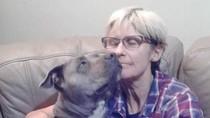 3 Turis Hilang di Pedalaman Australia, Baru Dua yang Selamat