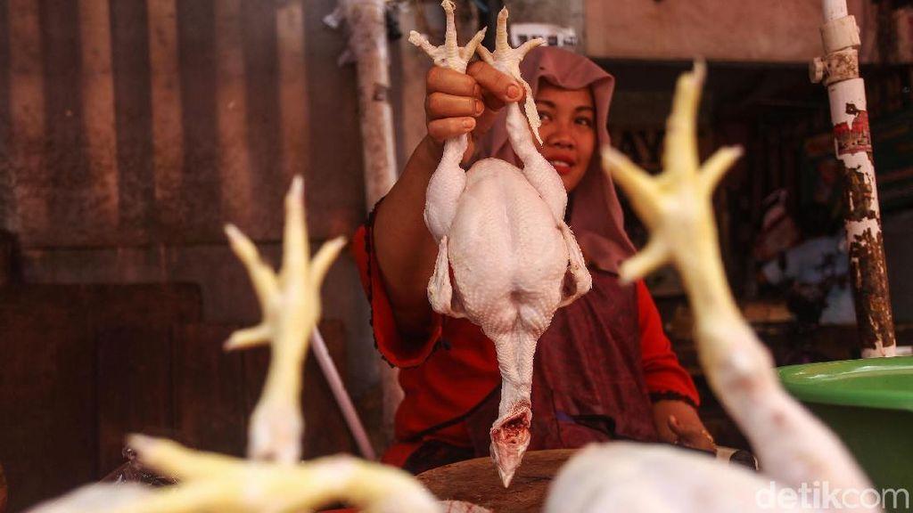 Harga Daging Ayam dan Telur Bikin September Deflasi 0,05%