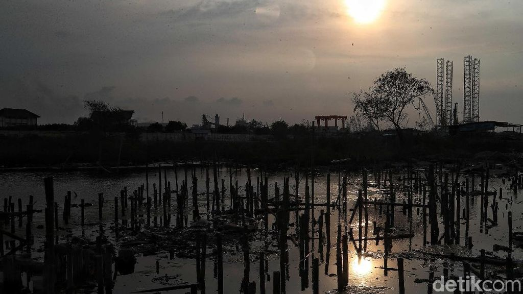 Badan Geologi Bicara Ancaman Jakarta Tenggelam yang Disinggung Joe Biden