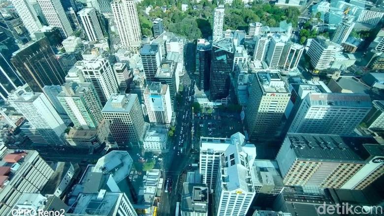 Foto: Kota Auckland dari Sky Tower (Edwidhian Tri/detikcom)