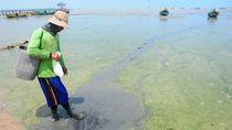 Potret Pantai Rembang yang Tercemar Limbah
