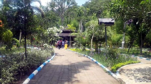 Selaras dengan namanya, Boon Pring menampilkan beragam varietas pring atau bambu. Di sini, ada hutan bambu yang Instagramable. (Hilda Meilisa/detikcom)