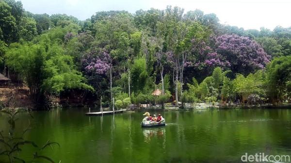 Ada danau lengkap dengan ratusan ikan di dalamnya. Pengunjung bisa langsung menyapa ikan-ikan yang nampak dari permukaan air sambil naik bebek-bebekan. (Hilda Meilisa/detikcom)