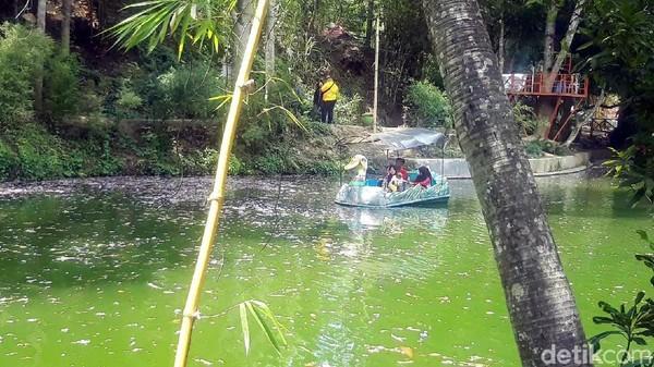 Air di danau ini berasal dari enam mata air, yakni Sumber Adem, Sumber Towo, Sumber Gatel, Sumber Maron, Sumber Krecek, dan Sumber Seger. Keenam mata air ini tetap terjaga seiring dengan dilestarikannya hutan bambu Boon Pring. (Hilda Meilisa/detikcom)