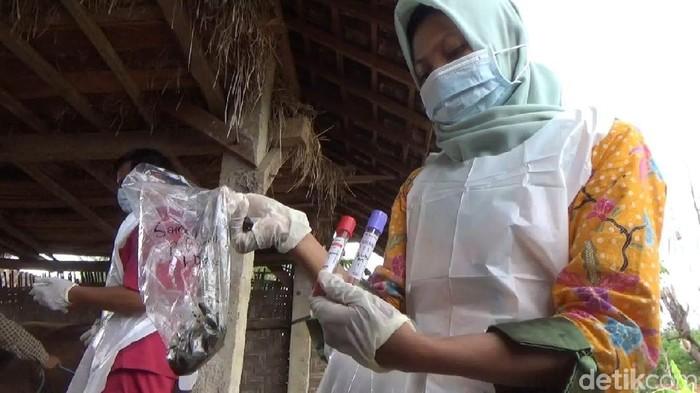 Saat petugas mengambil sampel/Foto: Adhar Muttaqin