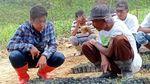 Mengintip Pertanian Terpadu di Tengah Hutan
