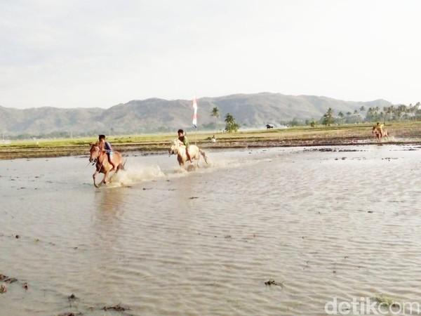 Dari namanya, perlombaan ini sudah pasti digelar di areal yang berlumpur seperti sawah. Tepatnya di areal persawahan Kelurahan Monta Baru, Dompu. (Faruk Nickyrawi/detikcom)