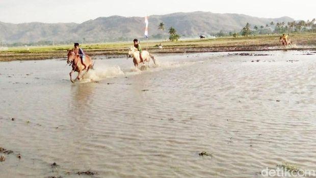 Melihat Pacuan Kuda Lumpur Cilik dari NTT