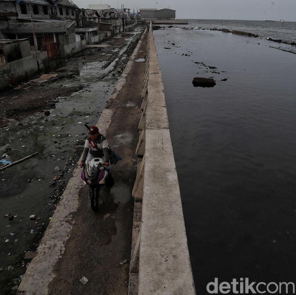 Tanggul Laut Jakarta dari Bocor Hingga Jebol