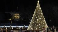 Terpukau Megahnya Pohon Natal Nasional Amerika
