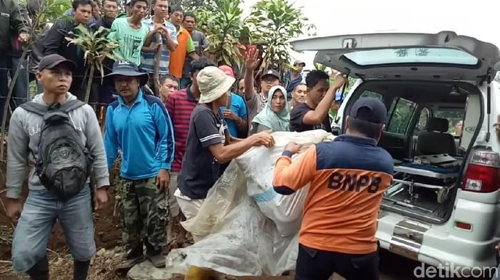 Petugas mengevakuasi jasad petani yang diterkam harimau. (Foto: Istimewa)