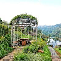 Kafe Instagramable di Punclut Ini Bisa Disambangi Saat Ke Bandung