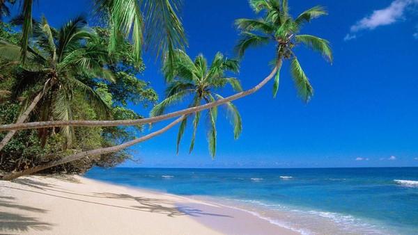 Kaya akan hasil laut, Fiji juga bergantung banyak pada sektor pariwisatanya. Sejumlah destinasi seperti Nadi, Pulau Denarau dan Mamanuca kerap didatangi oleh wisatawan dari Australia, Selandia Baru hingga Amerika Serikat (Thinkstock)