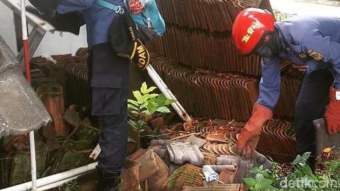 Foto: Ular kobra di permukiman warga di Bogor (Sachril-detik)