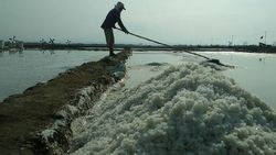 Tak Kunjung Laku, Harga Garam di Cirebon Anjlok Rp 100/Kg