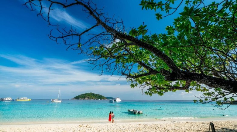 Romantic scene of young love couple take a photo with relaxing and happiness on the beach in Similan islands in Andaman sea at phang nga near Krabi and Phuket in southern of Thailand.