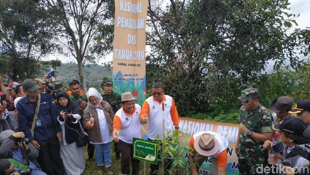 Ridwan Kamil Tanam 17 Ribu Pohon Hijaukan Kawasan Bandung Utara