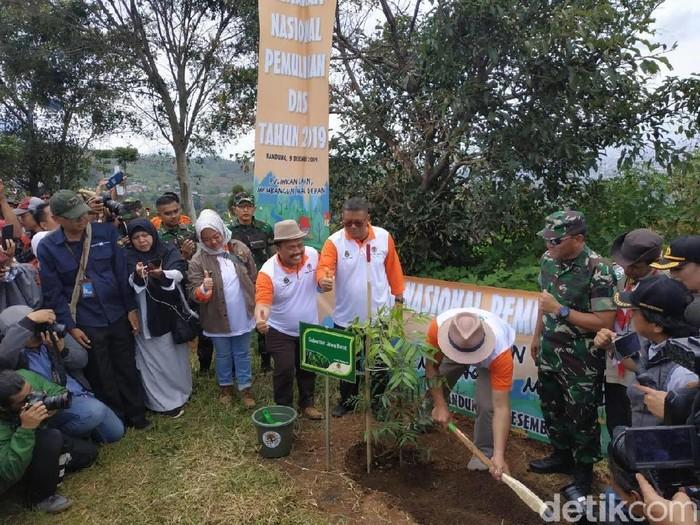 Ridwan Kamil menanam 17 ribu pohon untuk menghijaukan Kawasan Bandung Utara. (Mukhlis Dinillah/detikcom)