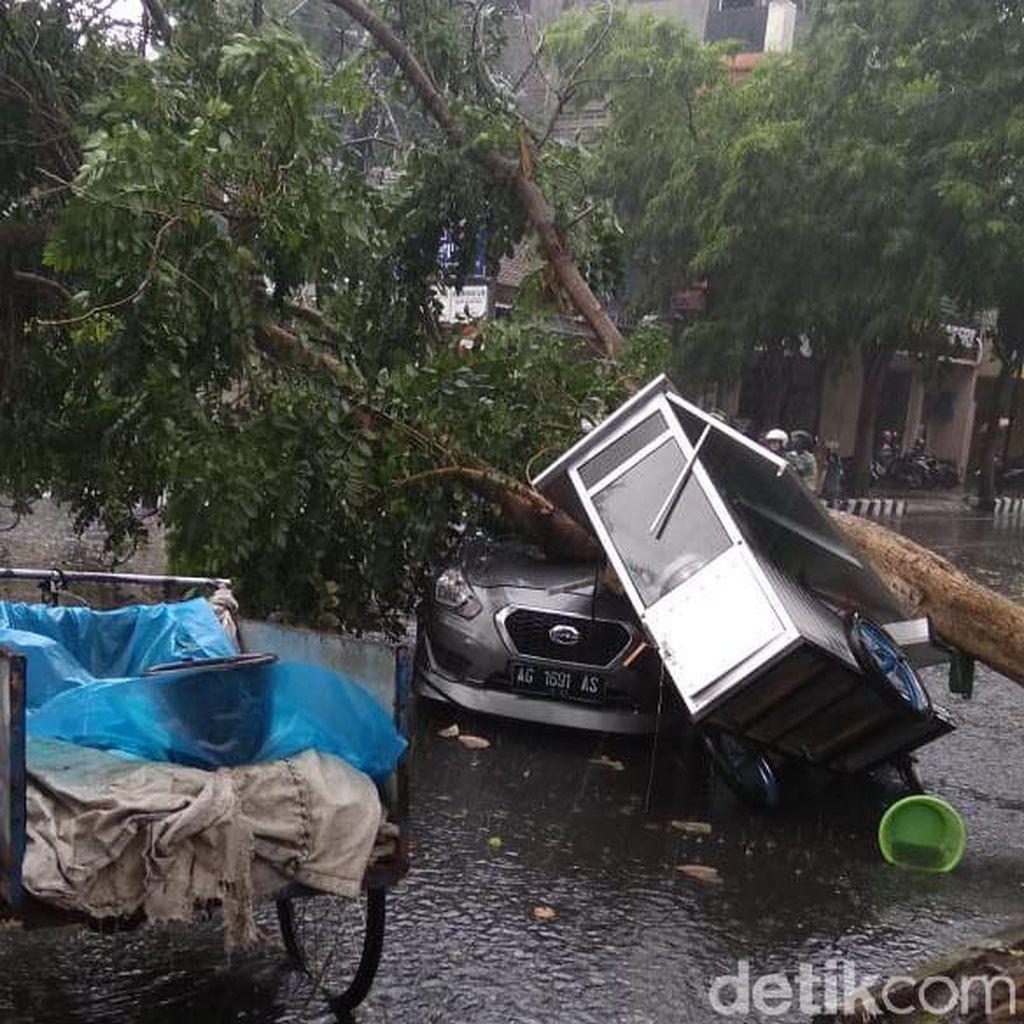 Tiga Mobil Tertimpa Pohon Tumbang Akibat Angin Kencang di Kediri