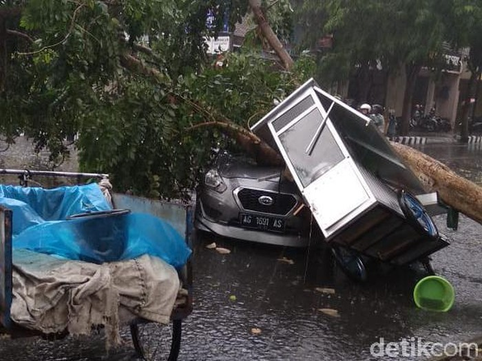 Pohon tumbang menimpa mobil dan gerobak pedagang (Foto: Andhika Dwi)
