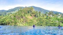 Tips Staycation Murah di Hotel Bintang 5 Puncak Bogor