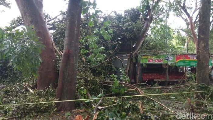 Warung yang tertimpa pohon tumbang (Foto: Andhika Dwi Saputra)