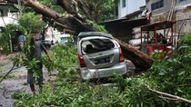 Dampak Kerusakan Angin Kencang yang Terjang Kediri Hingga Bangkalan