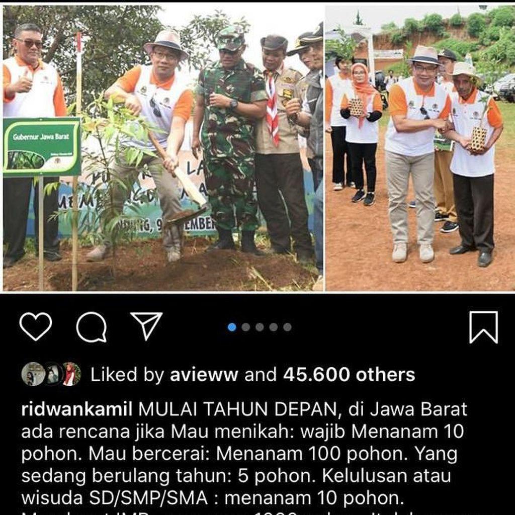 Wajibkan Pasangan Cerai Tanam 100 Pohon, Kang Emil Bercanda Apa Serius?
