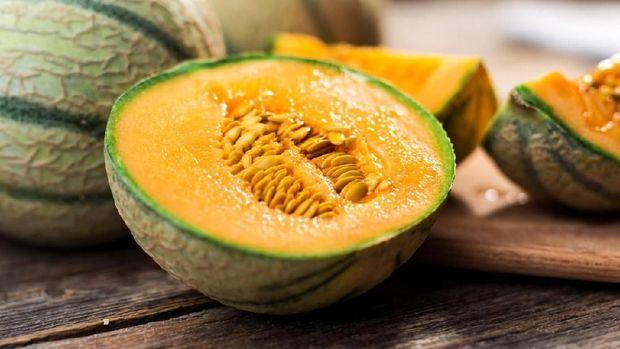 Fresh melon on tree. Cantaloupe. selective focus