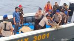 23 Penyu Hijau Hasil Penyelundupan Disita Polisi