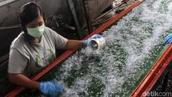 Melihat Proses Daur Ulang Sampah Plastik Air Kemasan